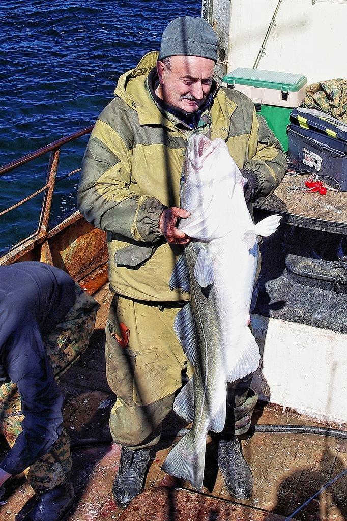 морская рыбалка в белом море